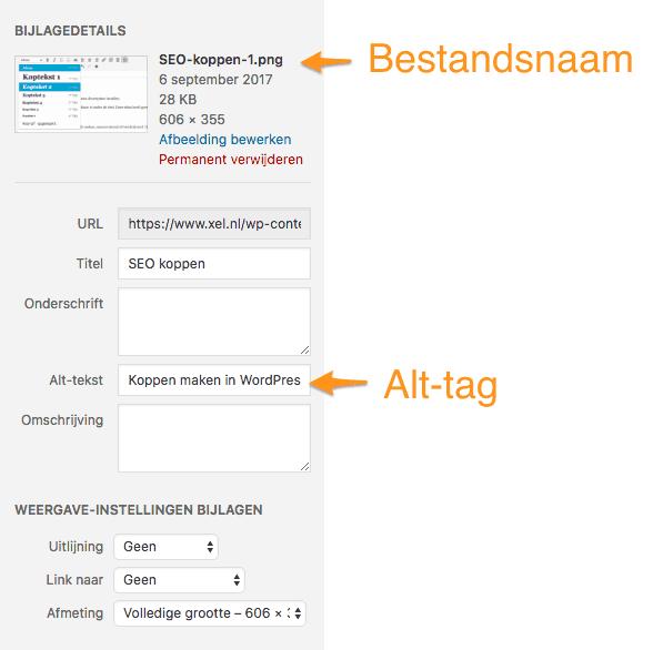 Alt tag in WordPress