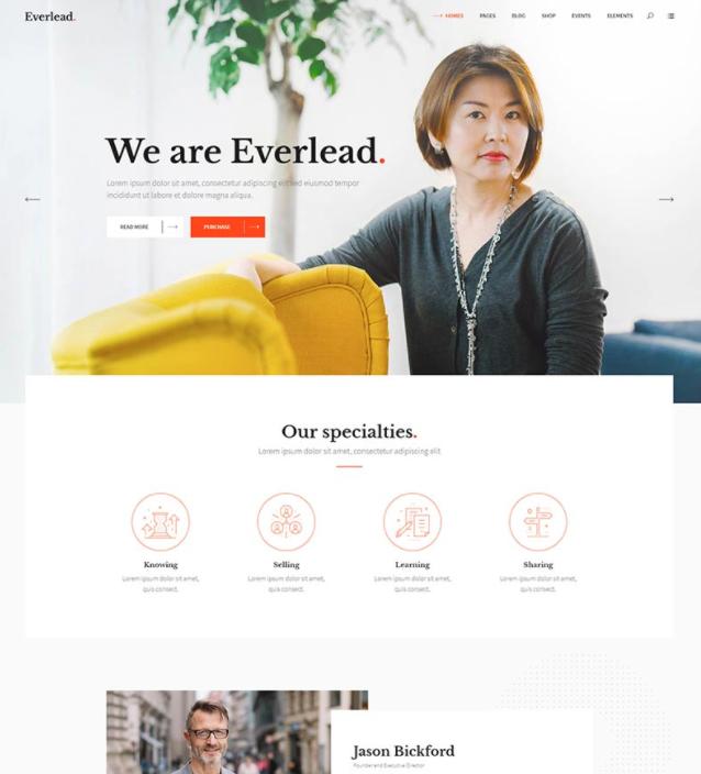 Voorbeeld van Premium WordPress theme Everlead